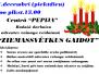 29/11/17 - Adventu vainagu veidošana